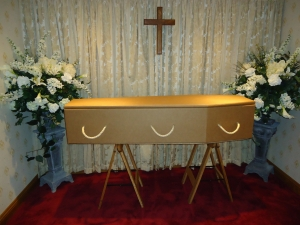 Image 1 - Cardboard Coffin