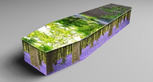 Image 2 - Colourful Coffins